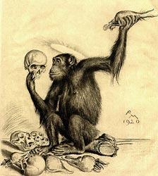 evoluzionismo_psicologia